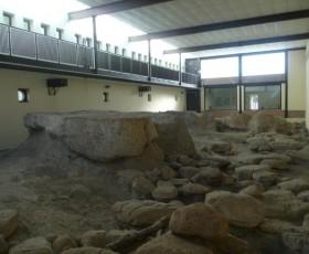 Visita al Museo del deposito pleistocenico di Casal de' Pazzi