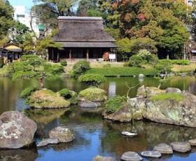Il Giardino Giapponese e Valle Giulia