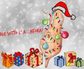 Un Natale sotto l'A...nfora!